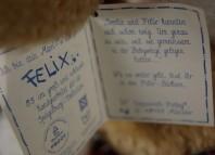 Die Spiegelburg, Weihnachts-Maxi-Felix